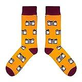 CUP OF SOX - Foto/Kamera/Hipster - Socken in der Tasse - Herren und Damen Geschenksocken Freizeit Socken, Orange, 37-40