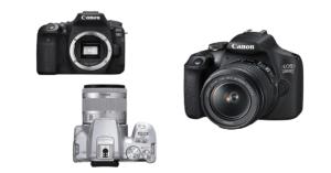 Canon DSLR mit APS-C Sensoren