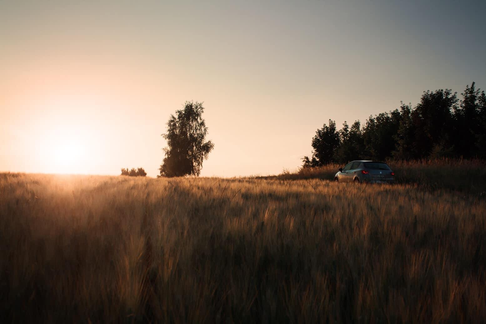 Seat Ibiza bei einem Feldweg
